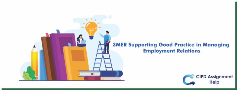3MER Supporting Good Practice in Managing Employment Relations