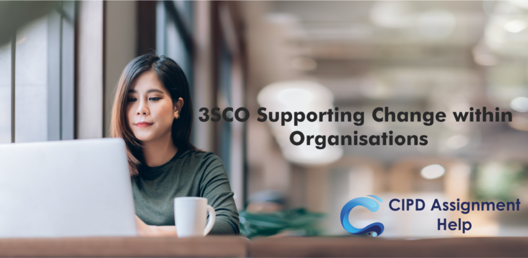 Supporting Change within Organisations