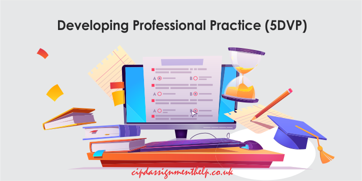Developing Professional Practice (5DVP)