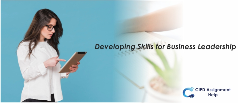 Developing Skills for Business Leadership