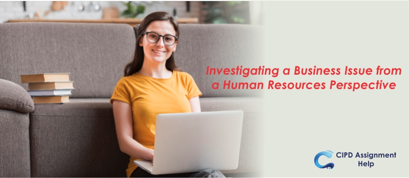 Investigating a Business Issue from a Human Resources Perspective