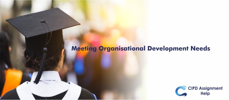 Meeting Organisational Development Needs