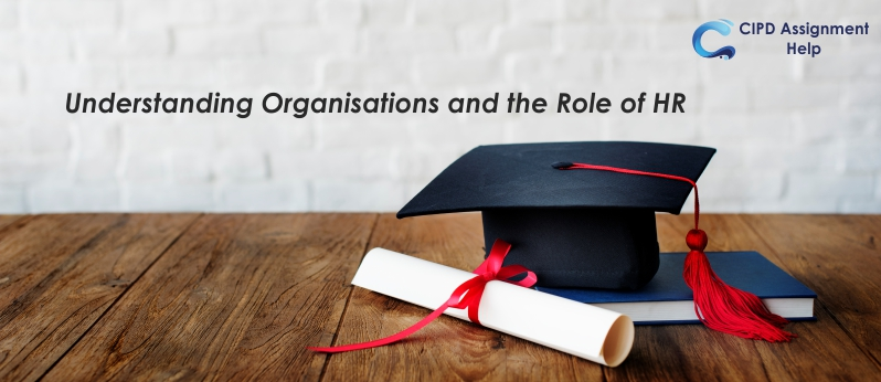 Understanding Organisations and the Role of HR