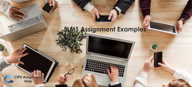 5LMS Assignment Examples