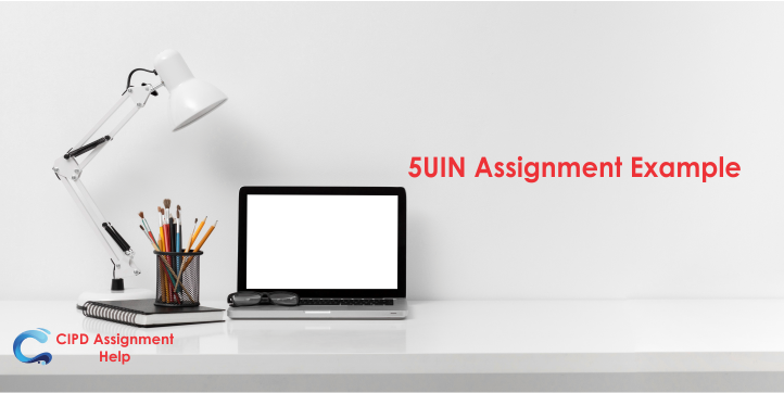5UIN Assignment Example