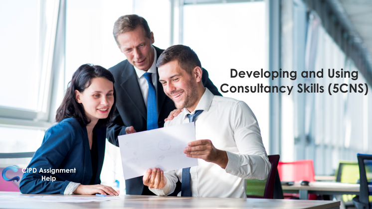 Developing and Using Consultancy Skills (5CNS)